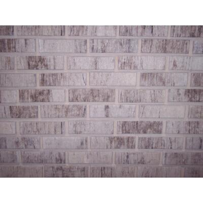 Z-Brick Americana 2-1/4 In. x 8 In. Gray Facing Brick