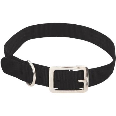 Westminster Pet Ruffin' it Adjustable 24 In. Nylon Dog Collar